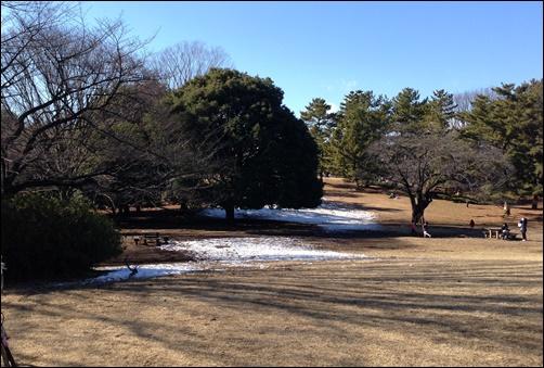 光ヶ丘公園で雪残り